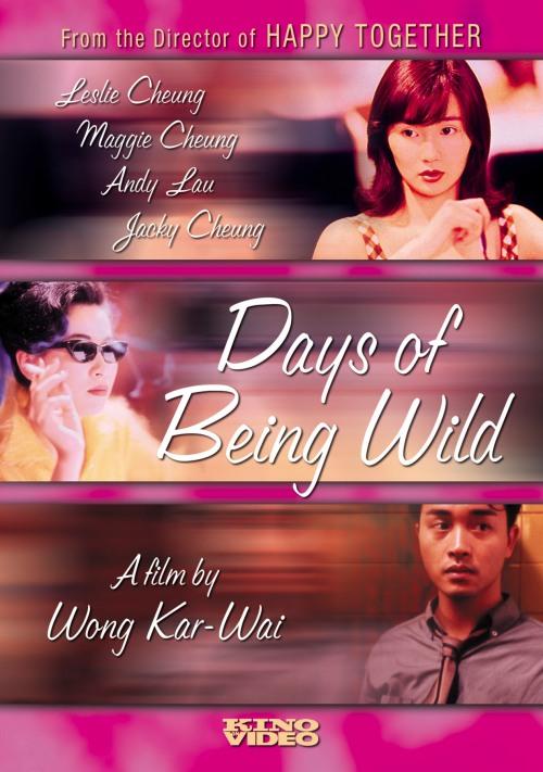 Days-of-Being-Wild-1990