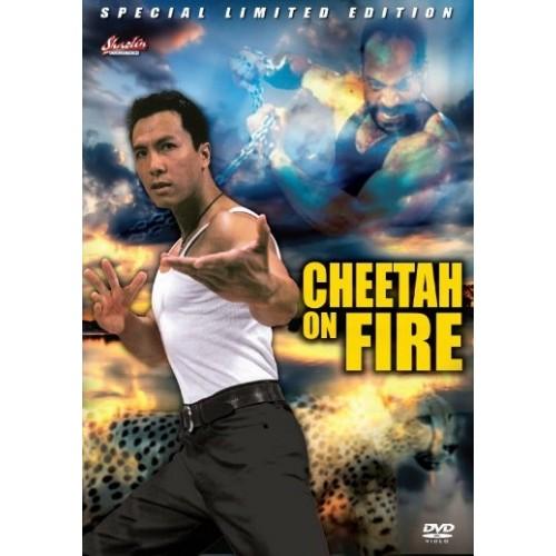 cheetahonfire